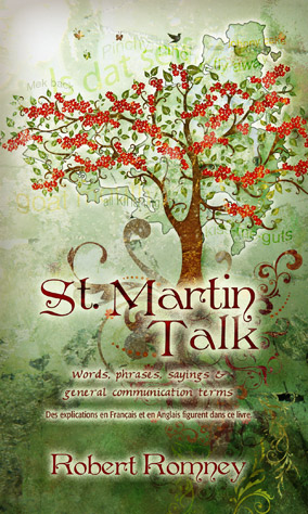 StMartinTalk